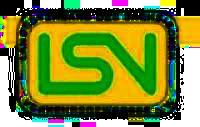 logo_lsv